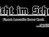 SiS Schriftzug s:w jpg